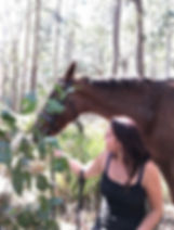 horse trailriding Wombat Forest trentham - Horse Therapy