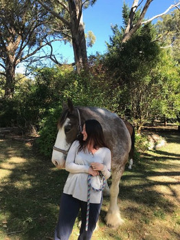Unconditional LOVE - as gifted by the horses