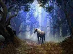 unicorn heart of the horse image.jpeg