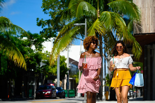Miami Design District Shopping.jpg