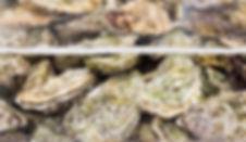 Shutterstock Oysters.jpg