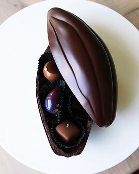 cacao pod 3-4 bighter.jpg