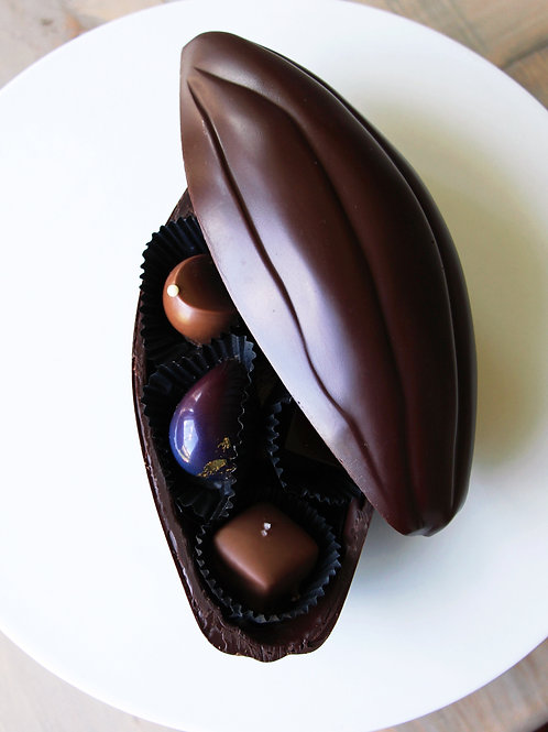 Obsession Cacao Pod