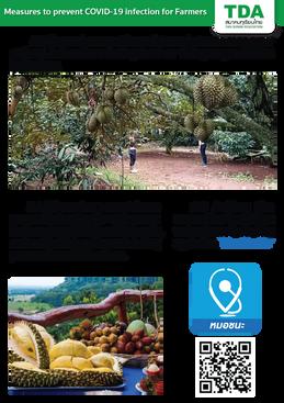 Thai Durian Association.png