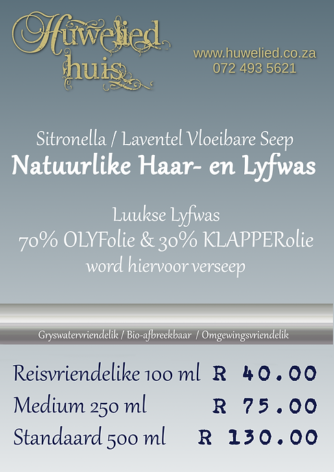 HH Haar- en Lyfwas fancy flyer.png