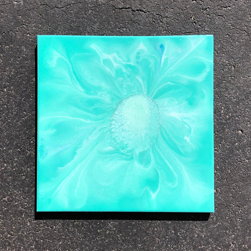 """SOLD!! """"The Birth of Spring"""" - 14"""" x 14"""" spray paint on canvas"""