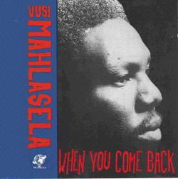 When You Come Back - Vusi Mahlasela