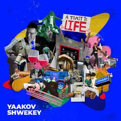 A TshwekA Toast to Life - Yaakov Shwekeyey
