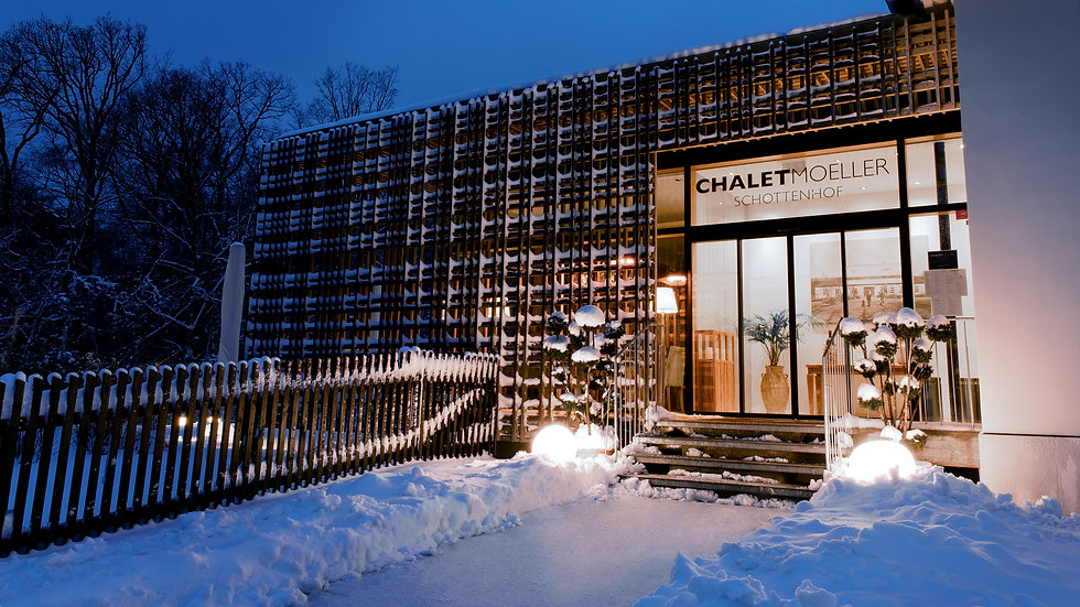 Chalet_Moeller_Winter_1-2019__03.jpg