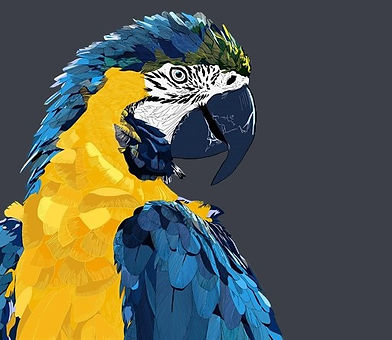 3thumb2-low-poly-art-macaw-parrot-4k-bir