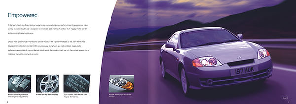 Hy Coupe spread purple.jpg