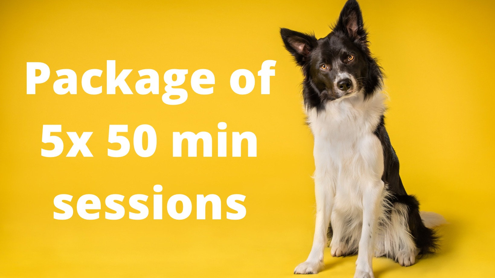 £30 for five 50 min sessions