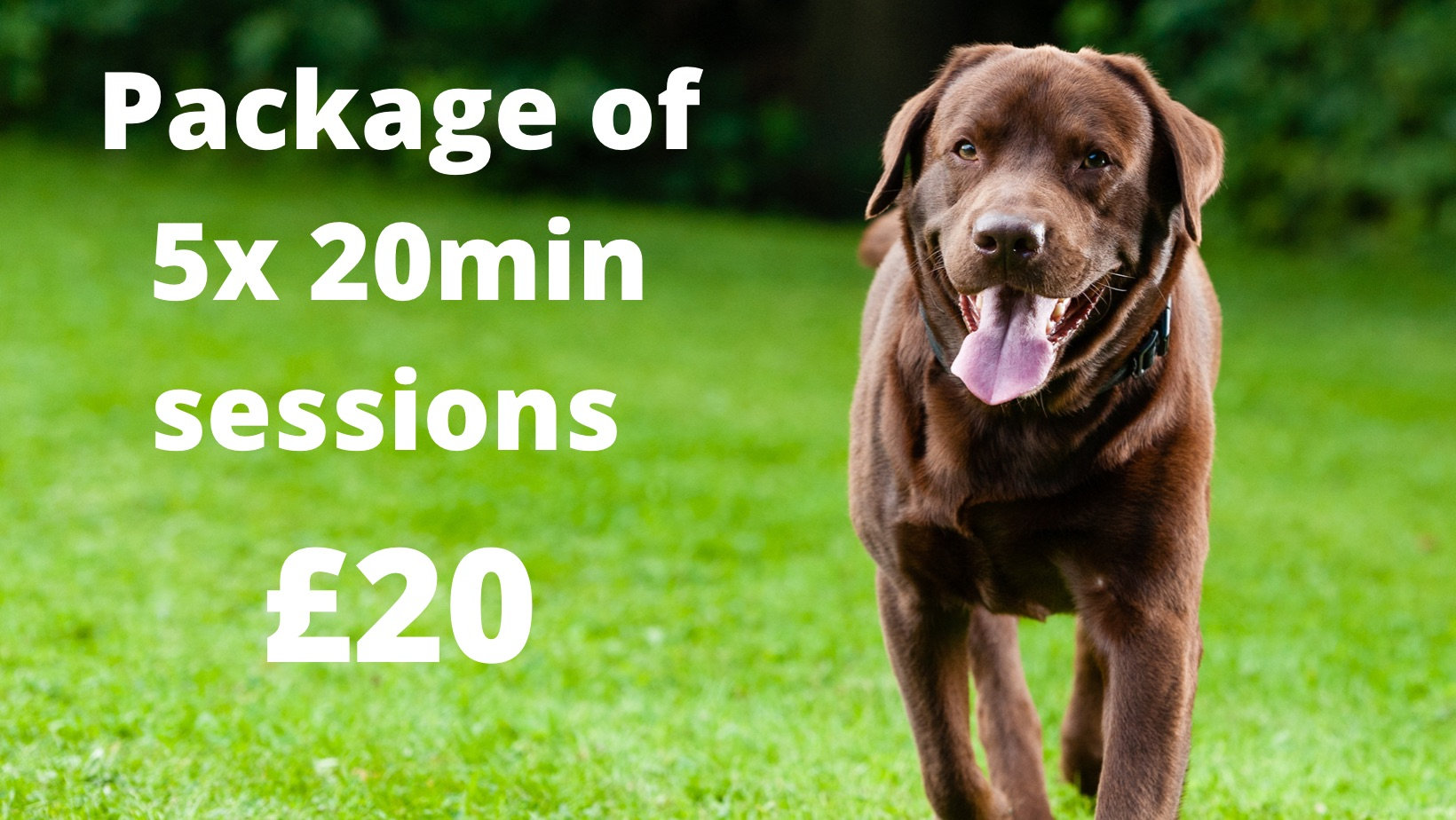 £20 for five 20 minute sessions