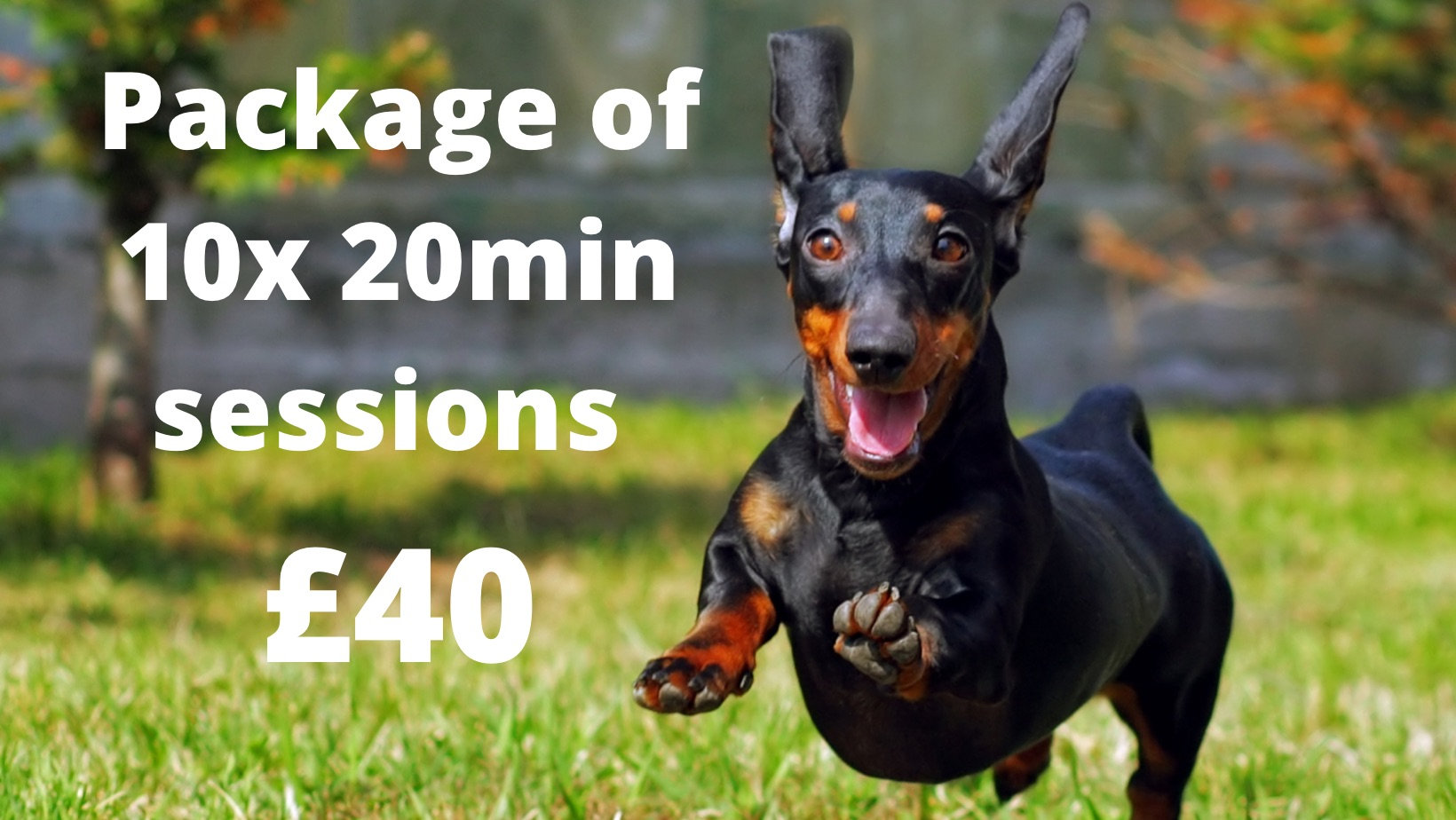 £40 for ten 20 minute sessions