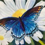Butterfly Series III - $250