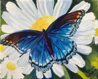 Butterfly Series III