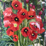 Red Poppies in the sun - $225