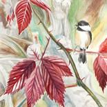 Chickadee on Red - $300
