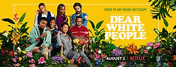 dear-white-people-netflix-season-3-viewe