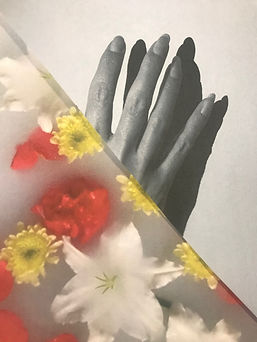 abstract photographic collage with a monochrome hand and colourful floral design, Created by Jemima and Jeorge. Discovery College photo club 2020.jpg