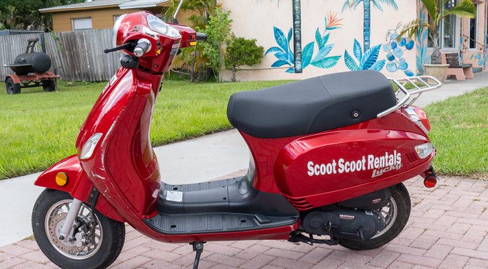 Scoot Scoot August-47.jpg