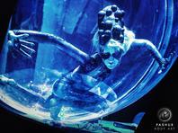 Cirque du Soleil Octopus