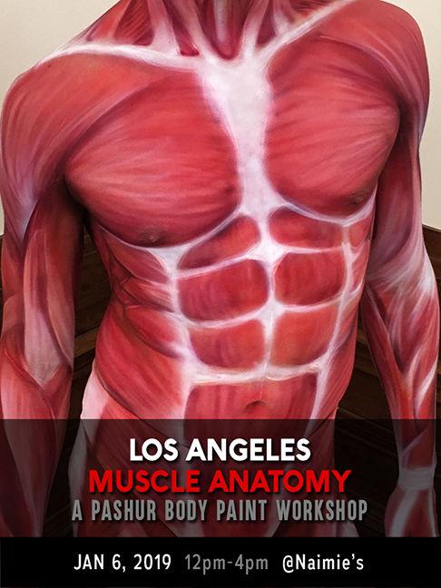Anatomy Workshop.jpg