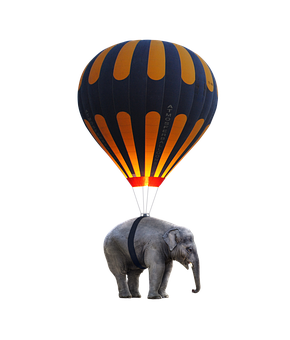 elephant-2635309__340