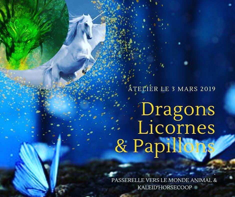 dragons licornes papillons