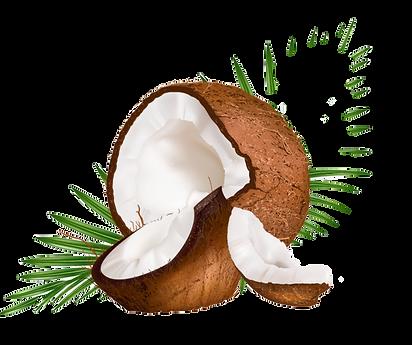 coconutImage.png