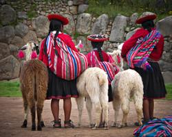 Girls and Llamas in Cusco, Peru