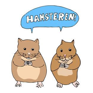 #13 Hamster