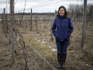 3 North Vines recognized by Women's Farm Network