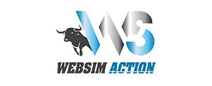 websimaction.jpg