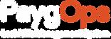 PaygOps_Logo (1).png