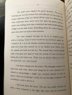 Excerpt 1