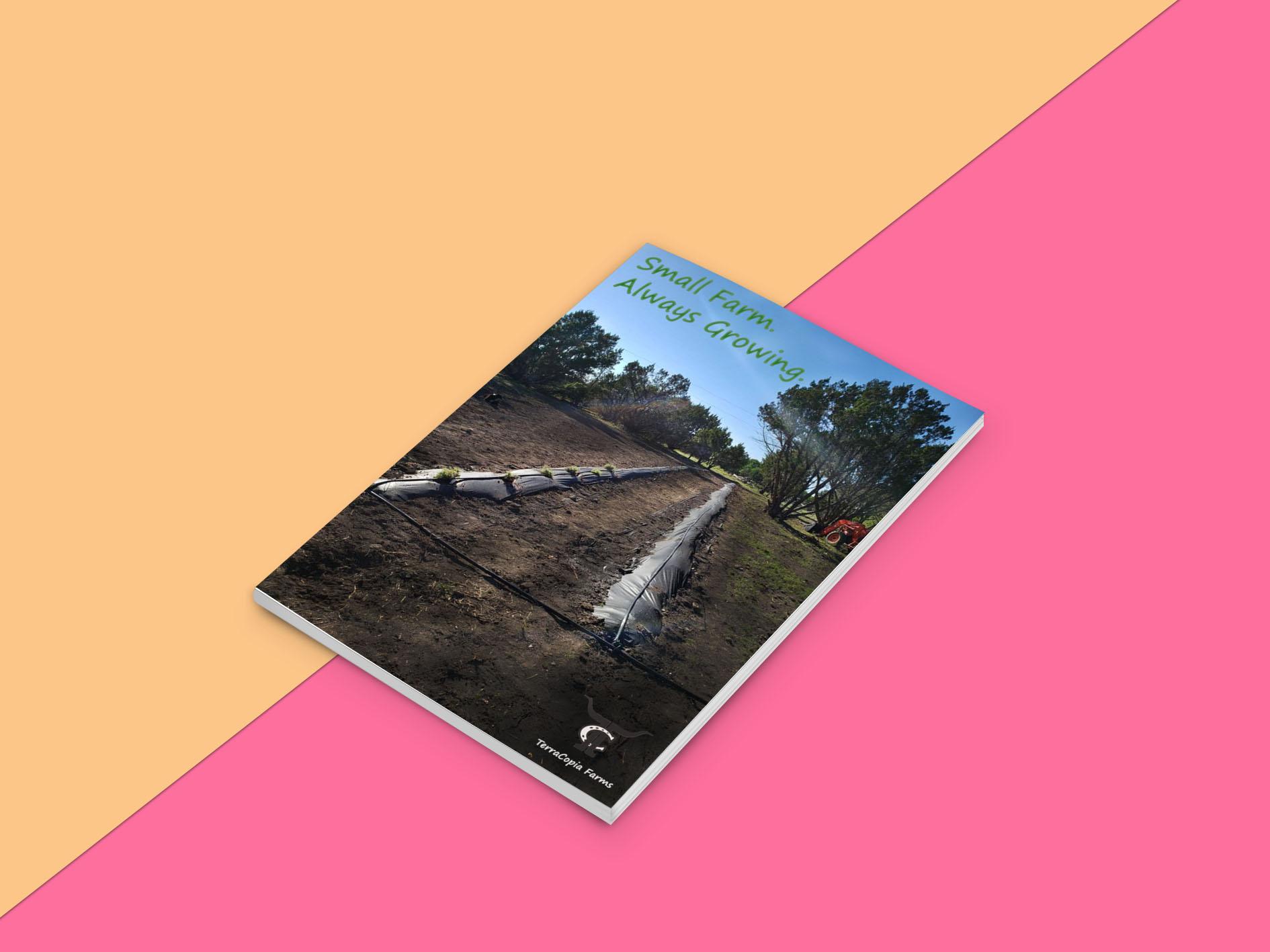 TerraCopia Print 2