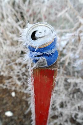 Bierdose im Frost - Diessenhofen.jpg