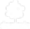 domlexia logo white