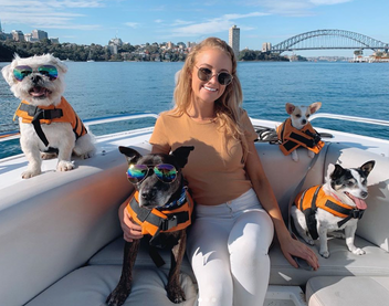 All Paws on Deck Campaign