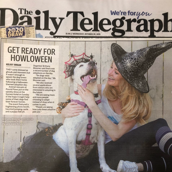 Daily Telegraph supports Pound Paws Dog Day