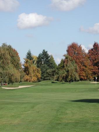 fall color.tif