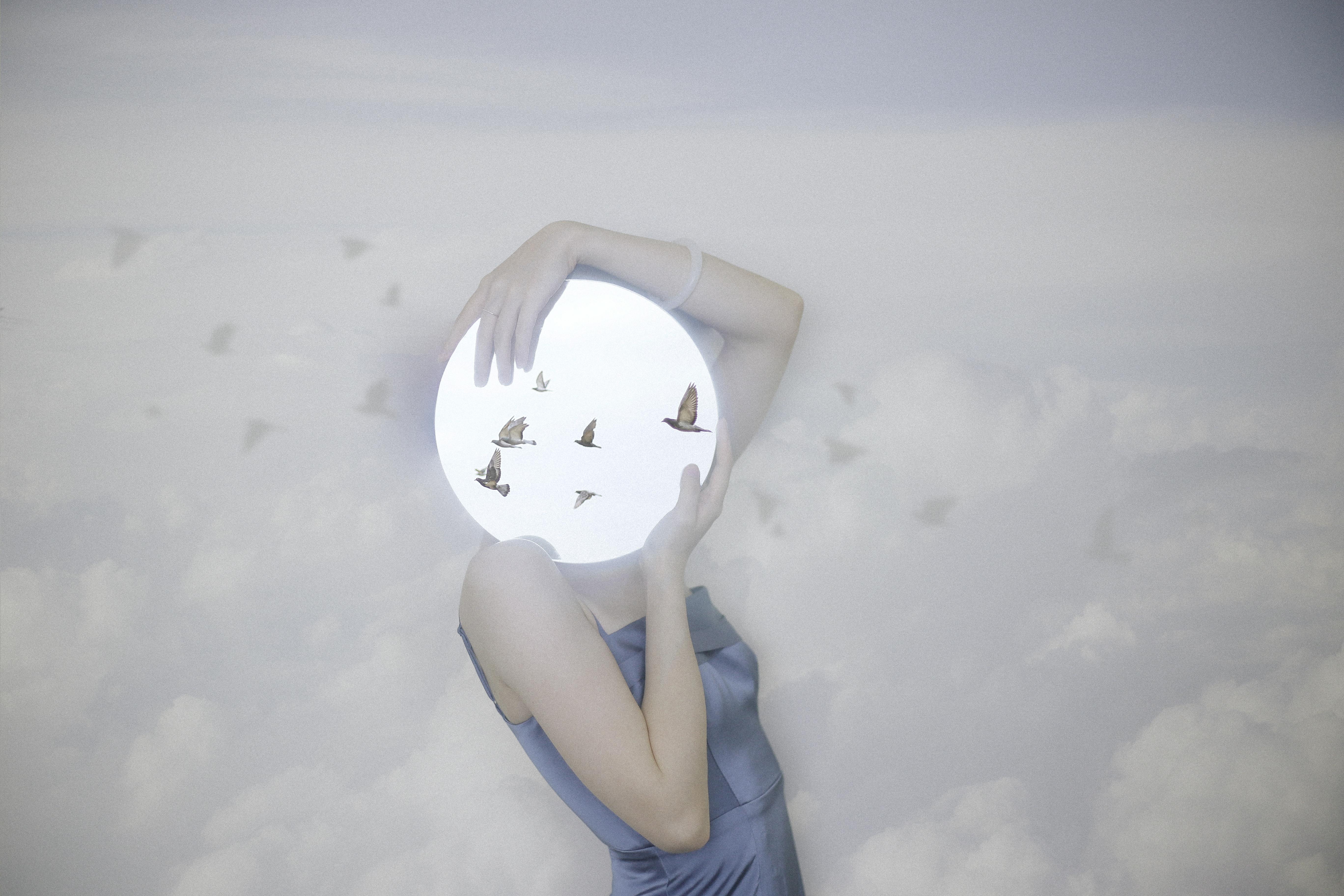 圆镜子鸟影子-1