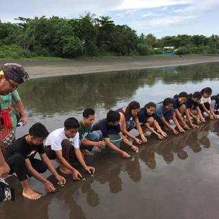 Releasing sea turtle hatchlings