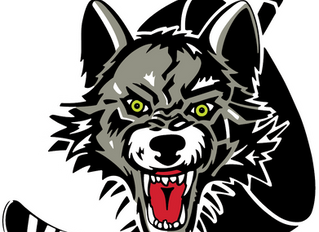 Play It Forward With The Chicago Wolves!