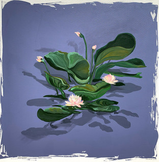 Levitation Lilies