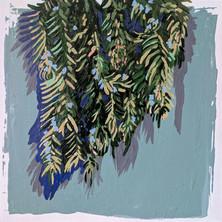 Bundles of Rosemary
