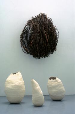 formes racines 1