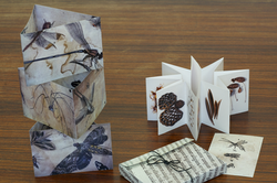 Objets d'artiste insectes et botanique