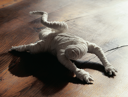 Petit lézard en bois (Petit llangardaix de fusta), 2000